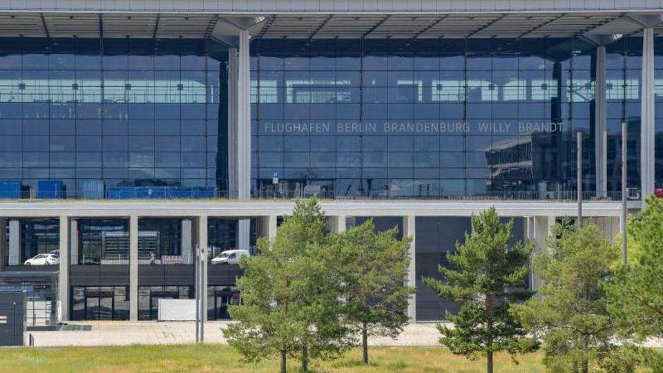 Kiefern wachsen auf einer Wiese vor dem Terminal des Hauptstadtflughafens BER. Foto: Patrick Pleul/dpa-Zentralbild/dpa/Archivbild