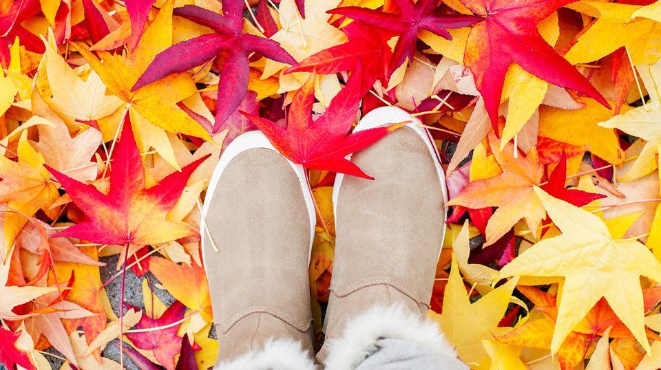 Wenn die Blätter fallen, fallen auch die Preise für Schuhe.