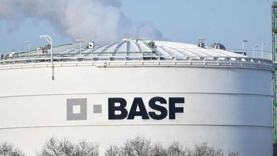 BASF steht wegen des Unkrautvernichters Dicamba in den Schlagzeilen. Foto: Uwe Anspach/dpa