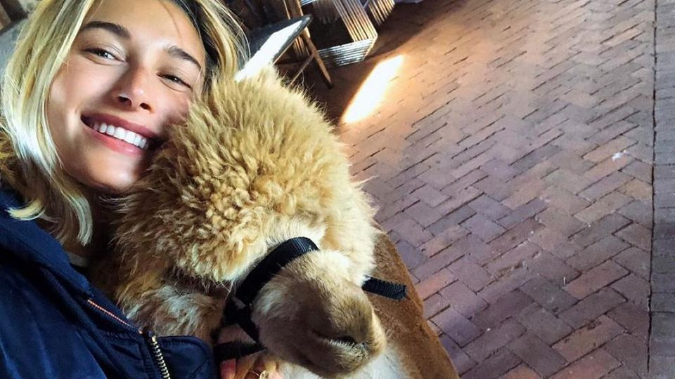 """Hailey Bieber mit einem süßen Alpaka im """"Schwitzkasten"""""""