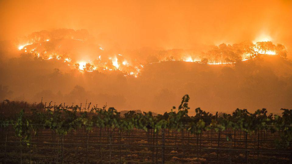 Brände - Waldbrände in Kalifornien treiben Tausende in die Flucht