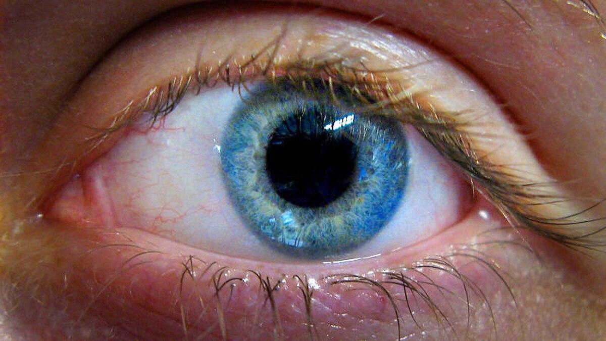 Iris dunkler die ring um Weißer punkt