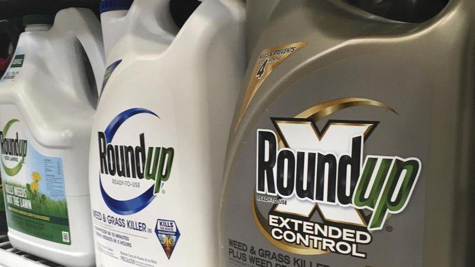 Behälter mit Roundup, einem Unkrautvernichter von Monsanto, stehen in einem Regal in einem amerikanischen Baumarkt. Foto: Haven Daley/AP