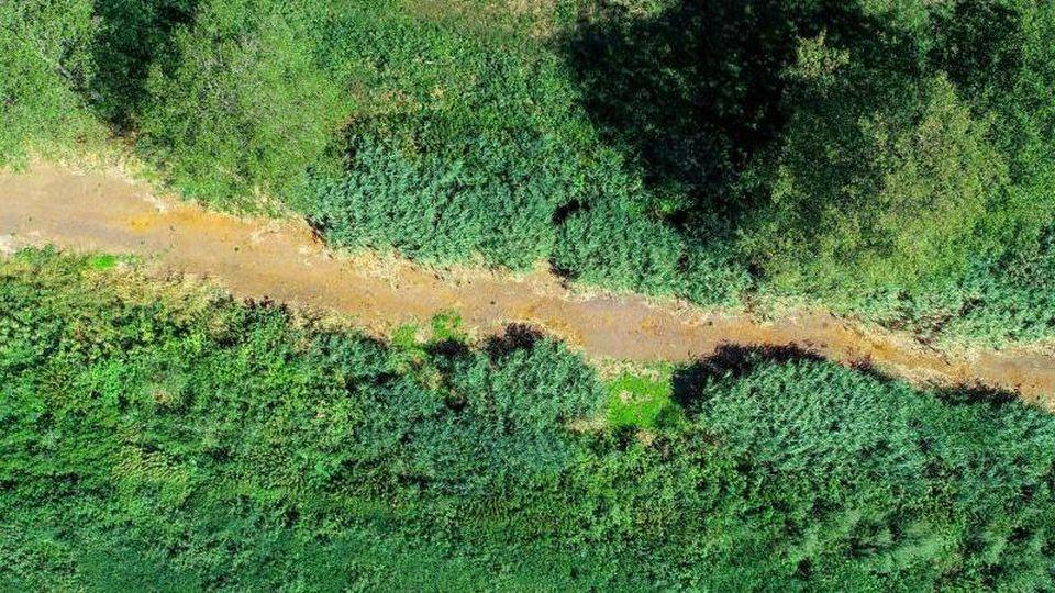 Das ausgetrocknete Flussbett der Schwarzen Elster. Foto: Patrick Pleul/dpa-Zentralbild/ZB/Archivbild