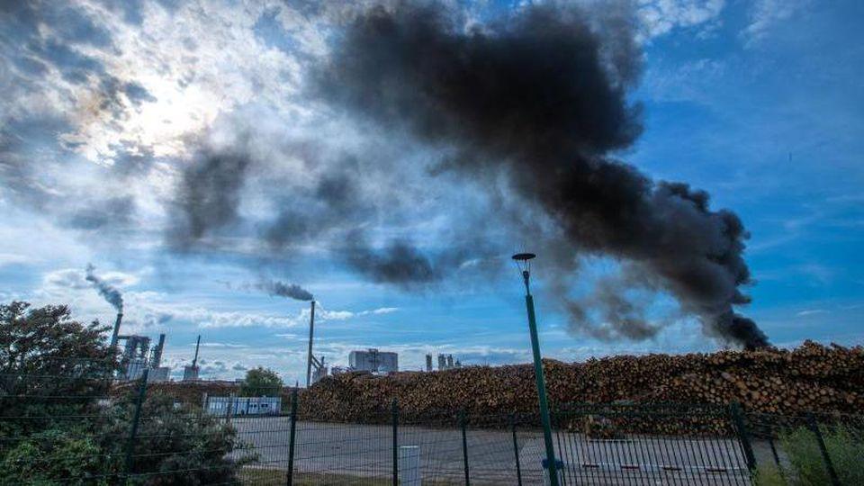 Dunkle Rauchwolken steigen bei einem Feuer über einem Holzlager am Seehafen auf. Foto: Jens Büttner/dpa-Zentralbild/dpa