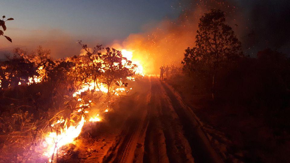 HANDOUT - 14.08.2019, Brasilien, Chapada dos Guimaraes: Auf diesem vom Chico Mendes Institut zum Schutz der Artenvielfalt zur Verfügung gestellten Bild beobachtet eine Gruppe die Flammen bei einem Waldbrand im Naturpark Chapada dos Guimaraes. Seit Wo