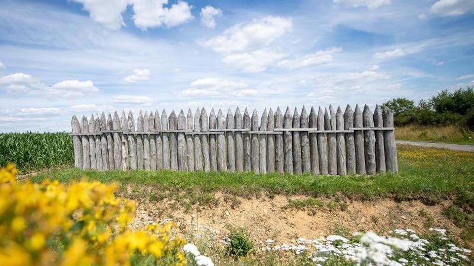 Rekonstruierte Holzpalisaden des Limes stehen auf einer Wiese. Foto: Sebastian Gollnow/dpa/Archivbild