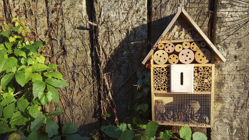 Ein Insektenhotel können Sie einfach selbst bauen.