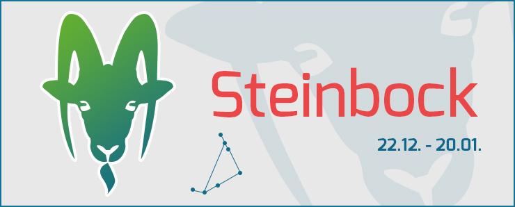 Steinbock 22.12 - 20.01