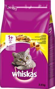 Was ist vor dem Katzenfutter Test zu beachten