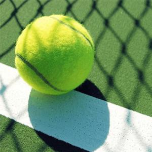 Nur ein Tennisball im Test und Vergleich?