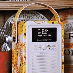 Welche Arten von DAB Radios gibt es in einem Test?