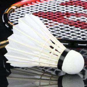Alle Fragen aus einem Badmintonschläger Test und Vergleich
