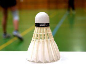 Das Testfazit zu den besten Produkten aus der Kategorie Badmintonschläger