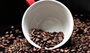 Wo einen günstigen und guten Kaffeebohnen Testsieger kaufen