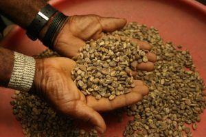 Der Komfort vom Kaffeebohnen Testsieger im Test und Vergleich