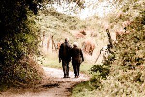 Auf diese Tipps müssen bei einem Rentenversicherung + Testsiegers Kauf achten?