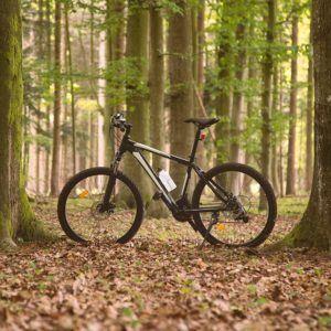Welche Crossbike gibt es im Test und Vergleich