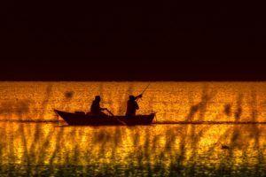 Alles wissenswerte aus einem Fischfinder Test