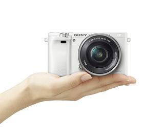 Worauf muss ich beim Kauf eines Digitale Spiegelreflexkamera Testsiegers achten?