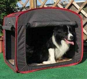 Hundebox Testsieger im Internet online bestellen und kaufen