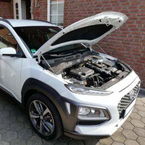 Die Ergebnisse zum Thema Hyundai Kona im Überblick