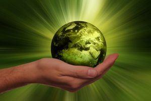 Welche Arten von nachhaltigen Fonds gibt es in einem Testvergleich?