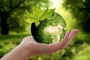Die Ergebnisse von Stiftung Warentest zum Thema Nachhaltige Fonds im Überblick