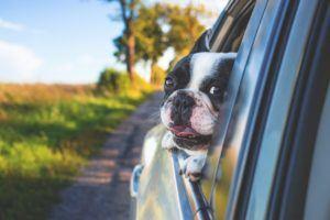 Was ist ein Autoversicherung Test und Vergleich?