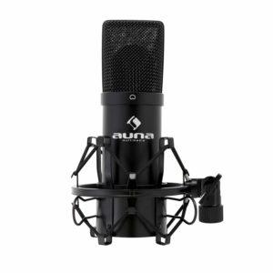 Die Fragen aus einem Mikrofon Testvergleich