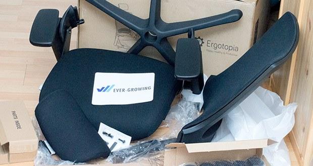 Ergotopia NextBack Ergonomischer Bürostuhl im Test - 5 Jahre Garantie auf die Mechanik