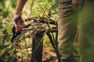 Griffe & Handhabung Gartenschere im Test und Vergleich