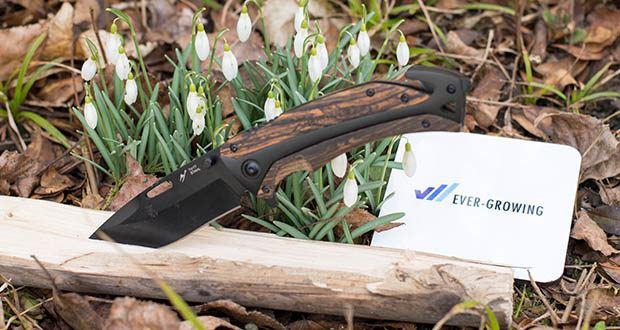 BERGKVIST 3-in-1 Taschenmesser K29 Tiger im Test - mit hochwertigem Holzgriff, schwarzer Klinge und hippen Design