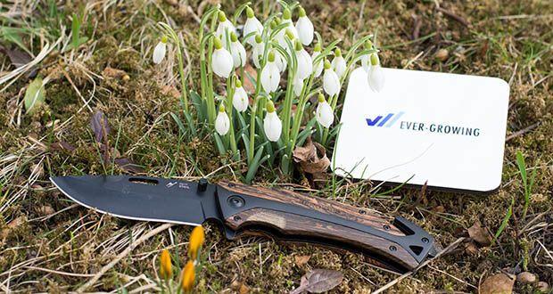 BERGKVIST 3-in-1 Taschenmesser K29 Tiger im Test - neues K29 Tiger Taschenmesser für deine Abenteuer