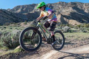 Welche Arten von E Mountainbike gibt es in einem Testvergleich?