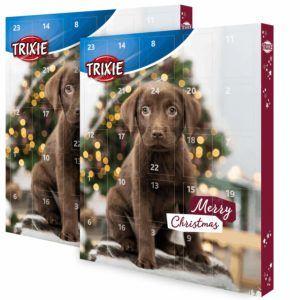 Nach diesen Testkriterien werden Hunde-Adventskalender bei uns verglichen