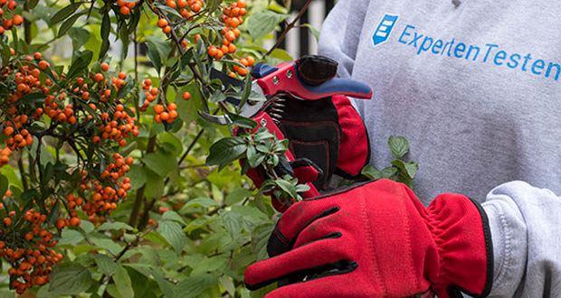 Spear & Jackson Razorsharp Bypass-Gartenschere im Test - PTFE-Beschichtung für Rostbeständigkeit