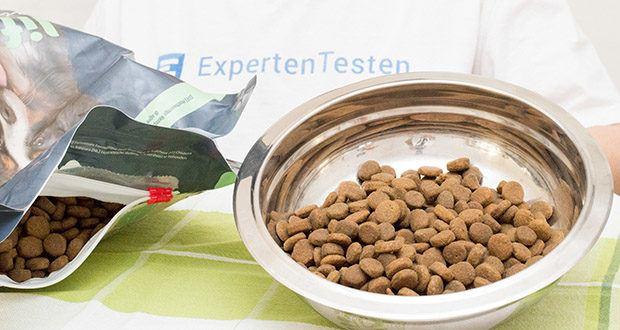 Lifelong Hundefutter für ausgewachsene Hunde mit Lamm im Test - natürliche Antioxidationsmittel