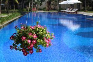 Häufig gestellte Fragen zum Poolbauer im Test und Vergleich