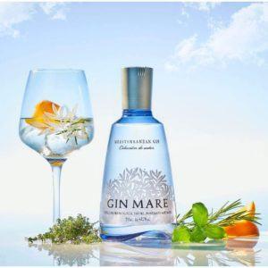 Der Gin Tonic ist der beliebteste Gin Cocktail.
